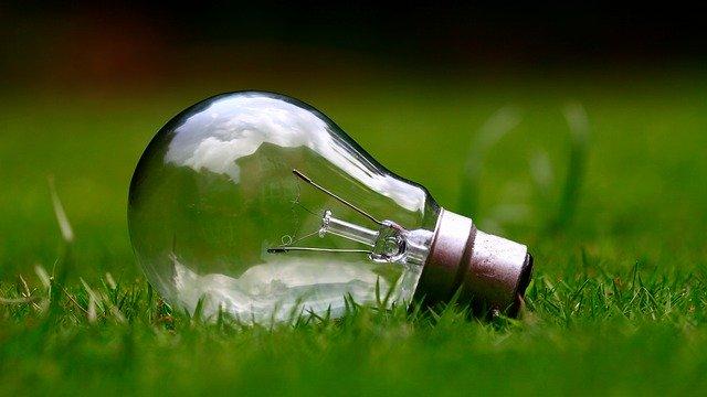 žárovka ležící v trávě