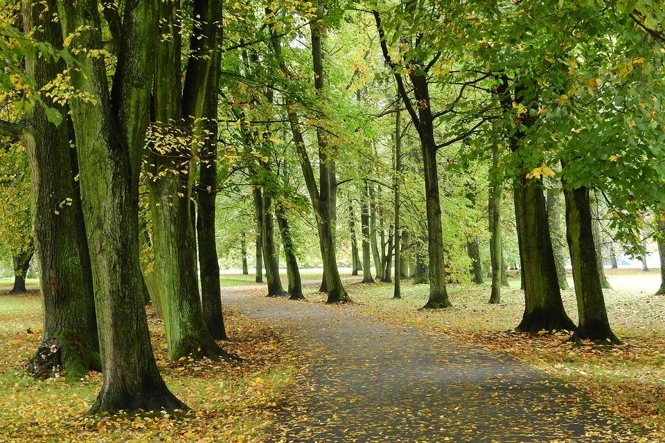 park podél Vltavy